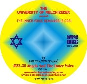 INNER VOICE SEMINAR 2: ANGELS AND THE INNER VOICE (CD)