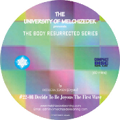 DECIDE TO BE JOYOUS / THE FIRST WAVE (CD format)